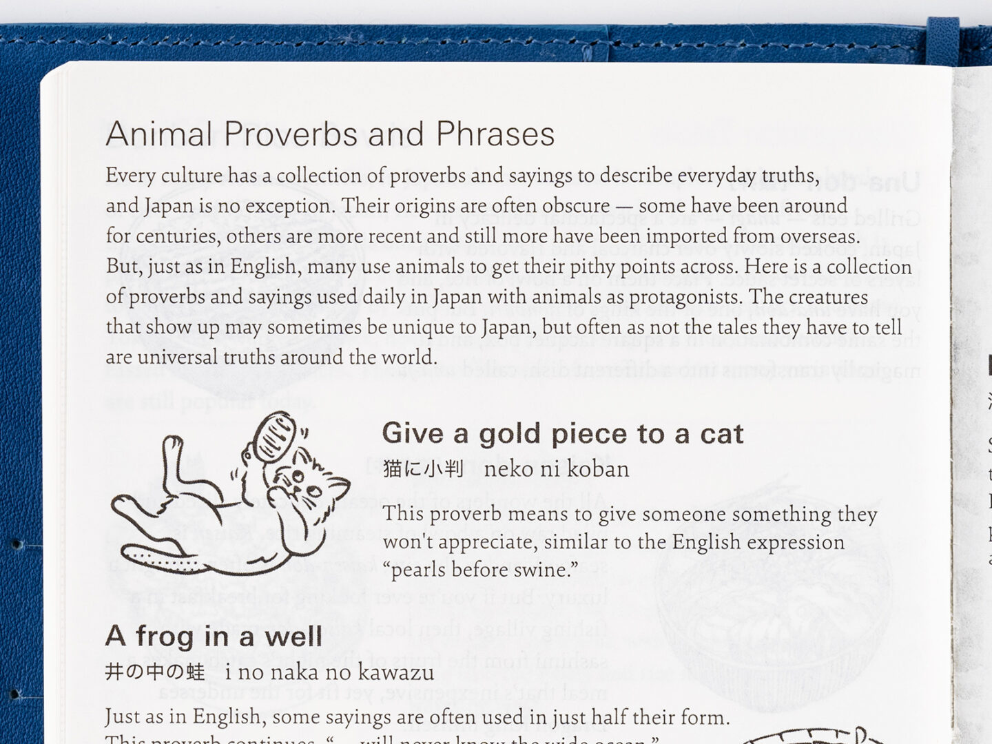 Animal Proverbs and Phrases